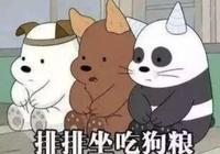 楊丞琳被李榮浩寵了5年,朱一龍卻和楊蓉吃了5年的火鍋