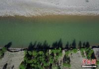 川藏線上的風景 西藏左貢初夏如畫