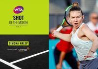 WTA五月最佳擊球:哈勒普