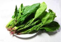 低血壓能吃菠菜嗎 低血壓要如何飲食