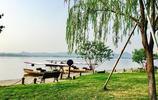 清晨夏景之西湖