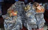 安徽農婦賣奇石,最貴一塊58萬最便宜一塊3萬,你認為能賣掉嗎?