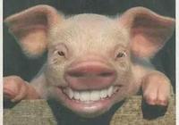 你見過最可愛的笑是什麼樣子的?