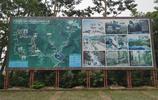 探訪東莞清溪銀瓶山:鏡頭下的石蟹,青蛇,小鳥等,你遇到過嗎?