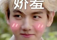 還記得那些韓劇中的短髮妹紙嗎?樸寶英樸信惠樸敏英誰是你的菜!