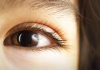 每個人都適合睫毛嫁接嗎 效果能維持多久