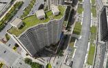 屋頂綠了!鄭東新區9萬平方米立體綠化,這個視角太震撼!