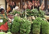 烏干達,香蕉主宰餐桌
