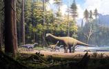 恐龍的圖集