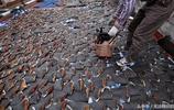 """鏡頭下:香港樓頂現""""魚翅集中營"""",超10萬隻魚翅太陽下暴晒"""