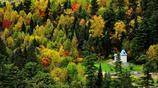 五營國家森林公園,這裡有中國規模最大紅松原始森林帶,環境清幽