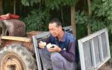心酸!71歲農村大爺澆瓜蔞不回家,午飯,桃子就幹饅頭