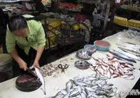 性價比超高的5種海魚,便宜還美味,攤主:這5種的魚不愁賣