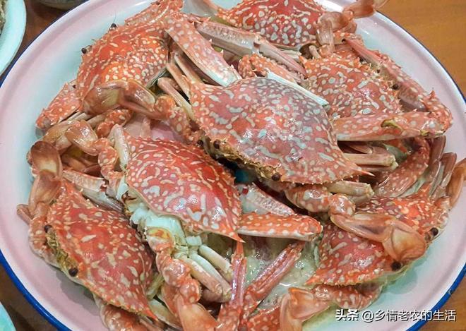 週末同事來家吃飯,338元做出7道海鮮大菜,5人吃得飽飽的