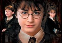 他就是哈利·波特