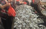 中秋節臨近海鮮市場貨源充足吃貨們有口福了只是價格略有上漲