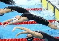 游泳比賽中,遊速最快的是什麼泳姿?