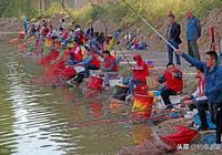 黑坑釣魚技巧分享,收費魚塘釣鯽魚的餌料味型選擇