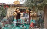 實拍:青島萊西農村晒秋玉米的畫面,平房上成排的糧囤