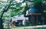 農村的小院,農村的生活