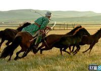 蒙古族的馬文化探索