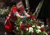 於曉光兒子推花車直面鏡頭不怯場,秋瓷炫穿婚紗單膝跪地預約來生