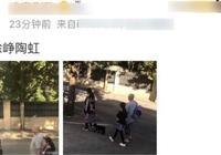 全家同框!徐崢陶虹夫婦素顏遛狗,11歲女兒入鏡五官超像爸爸