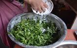 河南農村春天裡正吃的兩樣菜,能做蒸菜還能炒,今年你吃了嗎