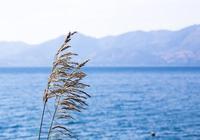 雲南最美的5個湖泊,不要再只知道滇池洱海了
