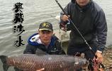 秋季野釣想狂拉大魚,就用專業大物竿!為巨物而生,天貓全場特價