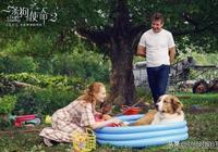 看小萌狗哭成狗:《一條狗的使命2》熱映中