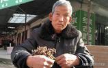 農民大哥賣一稀罕野果叫棗不是棗,樣子怪怪的,卻能醒酒、降血壓