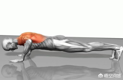 如何完成一個標準的俯臥撐?