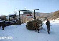 通化縣東來鄉鹿圈子村的由來