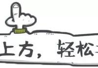 魯G0100M、魯GA777V、魯VW939K……通通被一次性扣12分,罰款2000元!