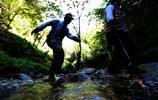 進深山穿河谷 你吃的草果是邊境村民這樣種出來的