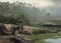有哪些關於蟒蛇的電影?