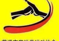 武林奇葩:菏澤掌洪拳