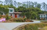 實拍四川一個普通農村,家家戶戶通水泥路、蓋小平房,日子不錯!