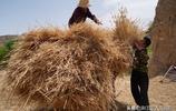 陝西農村2個妹妹來看84歲大姐,3人做出1鍋團圓飯,看看吃的啥