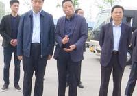 宿州市市長楊軍到埇橋區汴河街道調研農業產業化工作