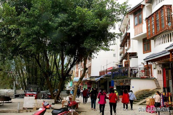 實拍世界長壽之鄉巴馬長壽村,遊客:這不是想象中的樣子!