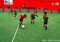 誰在阻撓中國足球的發展