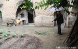 百年地坑院子遭遇2天大雨安然無恙,78歲老人帶你看雨水都跑哪了