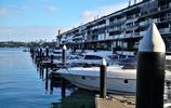 悉尼雲淡風輕的日子,手機街拍悉尼6