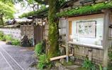 雲卷星空,京都下的花見小路會遇見怎樣