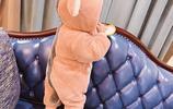 超Q萌的寶寶連體服,你確定不來一打?讓你家的寶寶變身萌娃