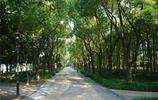 旅遊筆記 遊無錫蠡湖一角 景色優美 空氣清新