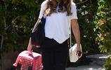 """新的工作要開始 凱特·貝金賽爾帶著她的""""貓朋友""""一起離家"""