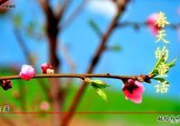 春天的童話(愛情散文詩連載188)